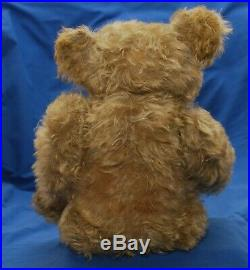 Beautiful & Rare 18 Antique 1930s German Helvetic Musical Bellows Teddy Bear