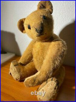 Beautiful old rare antique Bing German Teddy Bear C1900s