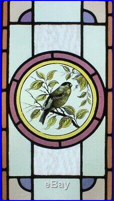 The Most Beautiful Rare Painted Bird In Foliage Victorian Stained Glass Window
