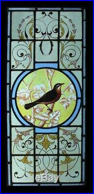 The Most Beautiful Rare Painted Bird Victorian English Stained Glass Window